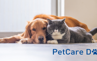 PetCare Day Cd Insurace